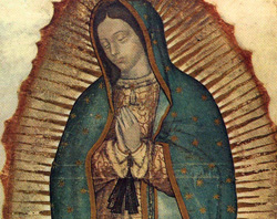 Our Lady of Guadalupe CN